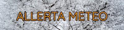 Banner Allerta Meteo Neve