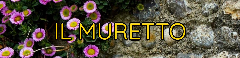 Banner Progetto Il Muretto